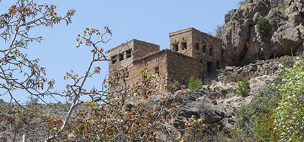 Oman Studienreise